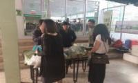 Community supporting Agriculturist providing organic vegetable and safe agricultural product to Kasetsart University