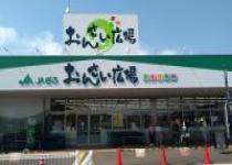 ศึกษาดูงานร้านสหกรณ์ JA KOME House และ Onsai Plaza ณ จังหวัดกิฟุ ประเทศญี่ปุ่น